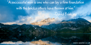 """A successful man is one who can lay a firm foundation with the bricks others have thrown at him"" - David Brinkley"